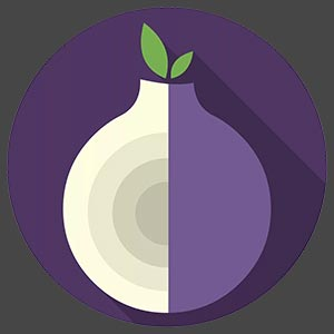 Tor Browser 10.0.6 для windows 10 на русском