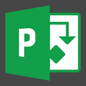Project Expert Professional 7.21